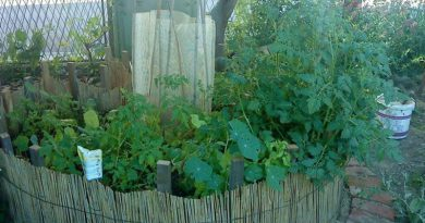 Keyhole garden u Zagrebu