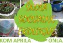 Škola socijalne ekologije